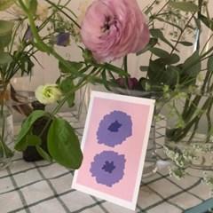 Wild flower postcard_lavender