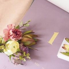 당신이라는 꽃을 피우기까지, 돌세토장미 에디션