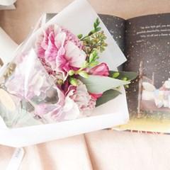 나풀나풀 꽃과 나비, 안티구아 카네이션 에디션