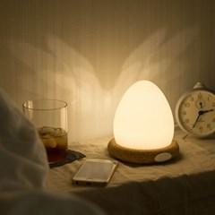 에그라이트(Egglight)