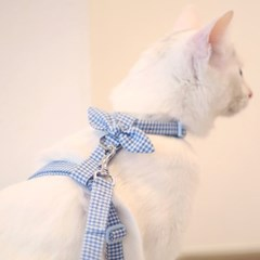 [인식표무료] 블루체크 고양이하네스