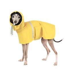 OUTDOOR RAIN COAT [MUSTARD]
