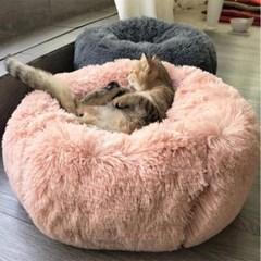 네이처마이펫 강아지방석 양송이쿠션
