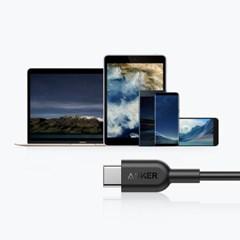앤커 ANKER 파워라인Ⅱ USB-C to USB-C 케이블 2.0 (A84820)