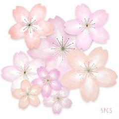 디원 벚꽃스티커 (YD19)