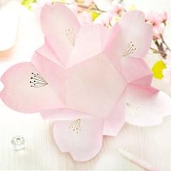 디원 진분홍 벚꽃잎 입체카드 (YD21)