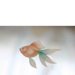 Fish - MOBILE