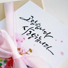엽서] 카네이션 꽃