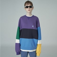 Combination sweatshirt-purple