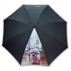 주문제작우산_이쁜 댕댕이_반려견 65멜빵자동 우산