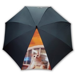 주문제작우산_이쁜 냥이_반려묘 65멜빵자동 우산