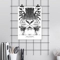 호랑이 동물 포스터 인테리어 그림 포스터