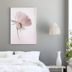 작약 꽃 액자 보테니컬 그림 인테리어 포스터