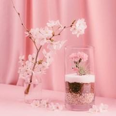 [어버이날선물] 카네이션화분 리비트리움-핑크
