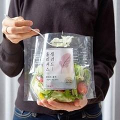 홀리셔스 몸매관리 파우치 샐러드 5팩