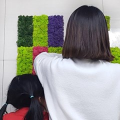 편백 스칸디아모스 포인트벽지 / DIY 손쉬운 블럭형 대X1개