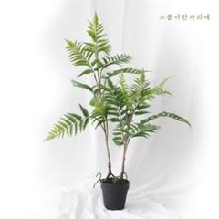 펀 트리 조화나무