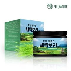 필네이처 청정 제주산 100% 새싹보리분말 가루 70g