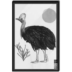 cassowary (카쏘와리)
