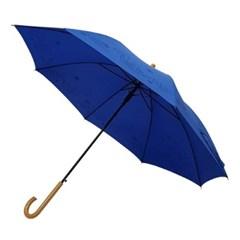 [이웃집 토토로] 장우산(토토로 날다)