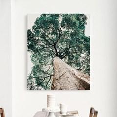 캔버스 보타니컬 식물 풍경 아트 천 액자 나무 ver2