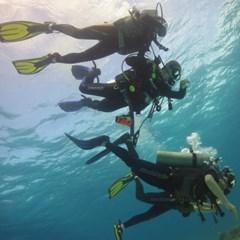 [텐텐클래스] (속초,제주도) 스쿠버다이빙 하는 사람 인싸!