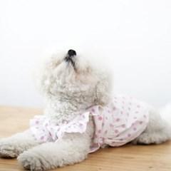 러블리 핑퐁 드레스 _ 딸기사탕