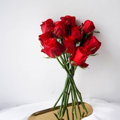 클래식 로맨틱 - 푸에고 장미