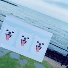 (너나들이) 반려동물_ 일러스트 증명사진 초상화