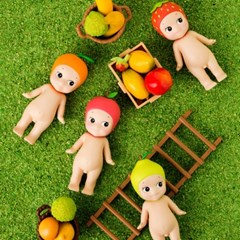 [드림즈코리아 정품 소니엔젤] Refine Fruit(과일) (박스)