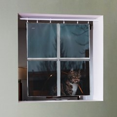 캣 인더 윈도우 패브릭 포스터 / 가리개 커튼