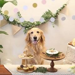 [그냥,점례] 너를 그린 강아지 생일케이크(대)
