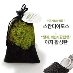 [숲앤숨] 활성탄 모스 공기정화주머니 (랜덤