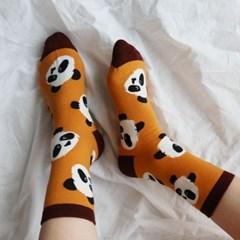 브라운 곰 팬더 패턴 양말 (2color)