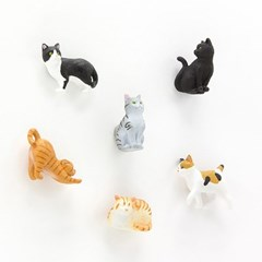 MINI MAGNET (6pcs) - 고양이