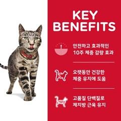 2968 NEW 고양이 1~6세 퍼펙트 웨이트 1.4kg