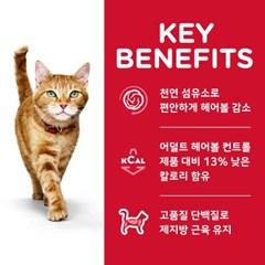 8882 NEW 고양이 1~6세 헤어볼 라이트 3.2kg