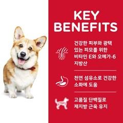 604464 강아지 스몰바이트 치킨 1~6세 12kg
