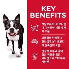 603931 강아지 스몰바이트 라이트 1~6세 6.8kg
