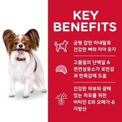 10330HG/NEW 강아지 어덜트 스몰포 라이트 1.5kg