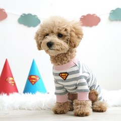 슈퍼맨 치비올인원