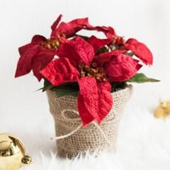 베이직 포인 화분 20cmP 트리 크리스마스 TRFAHM_(1507518)