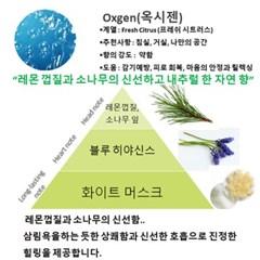 [NEW] 옥시젠 카에어프레셔 (16CAR46)