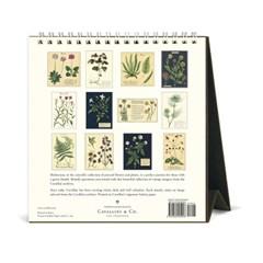 2020 카발리니 탁상캘린더 Herbarium