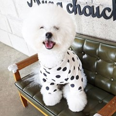[DOG] 몽페레 플러피 도트맨투맨 (Milk Cream)