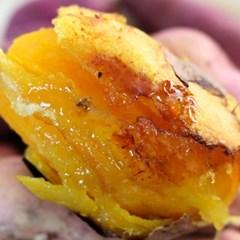 [레이고구마]영암 세척 황금 꿀 고구마 중 10kg_(1127662)