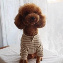 포그니 스트라이프 오가닉 강아지 내복 티셔츠 멍고메리