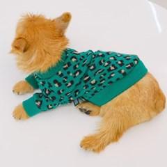 Leopard Knitwear (Green)