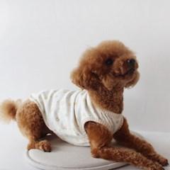 멍고메리 테디 오가닉 강아지 내복 티셔츠