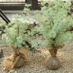 솔가지 솔방울 나무 화분 조화(3size)_(1810778)
